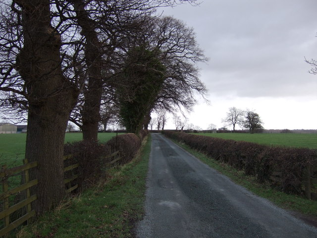 Track to Spruisty Hall Farm