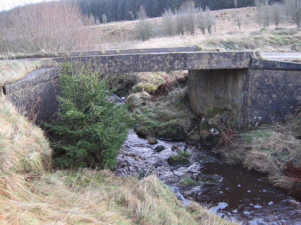 Bridge over Middle Burn