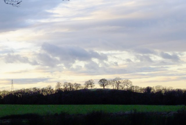 Shortly before sunset: view from Ashtead Common