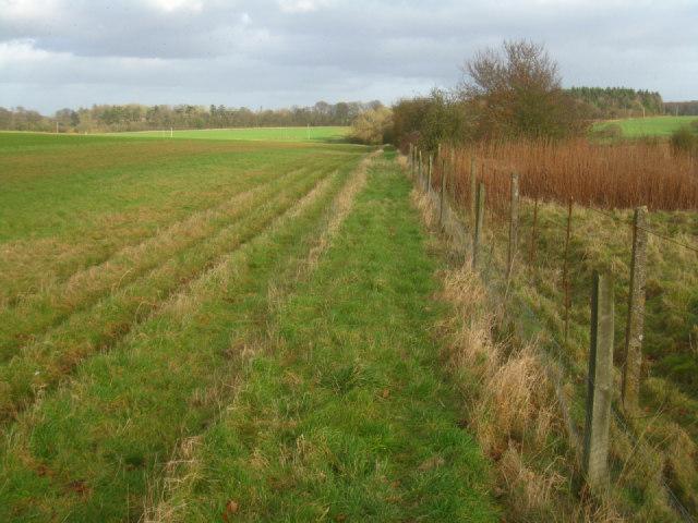Field boundary by railway