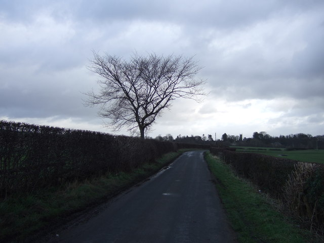 Nidd Lane heading east