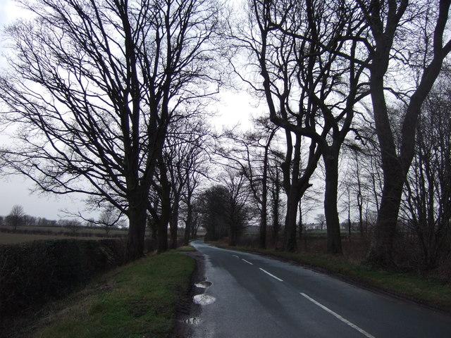 Green Lane heading north