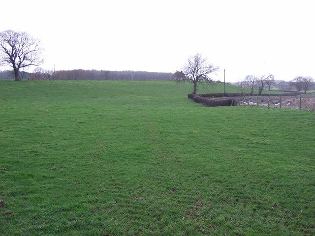 Farmland, Hill House Farm