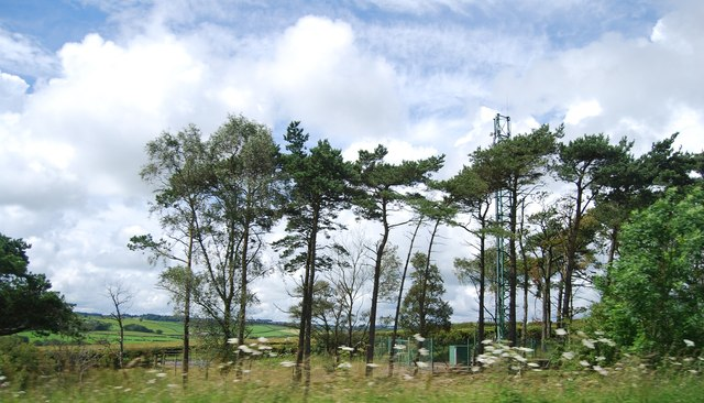 Telecommunications mast in the trees by the M74