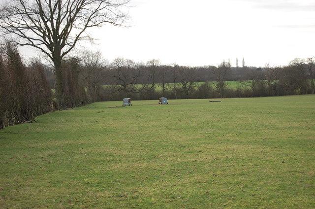 Animal feeders in field