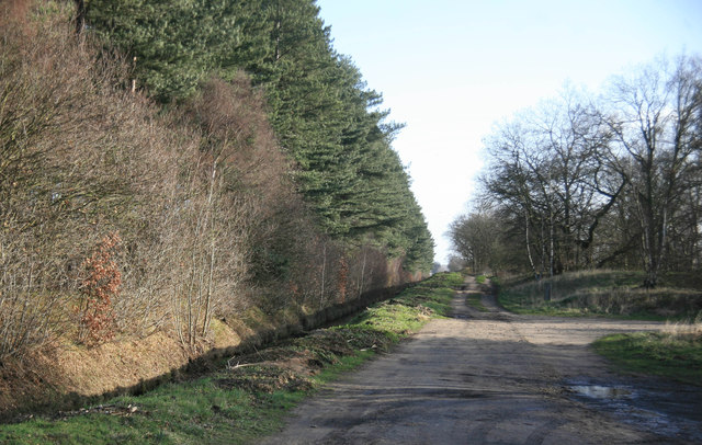 Bridleway towards Blyton