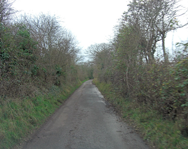Normandy Lane