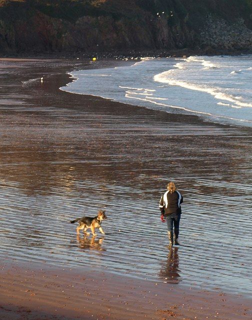Dog walker, Broadsands