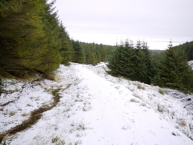 Salter's Road north of Clay Burn