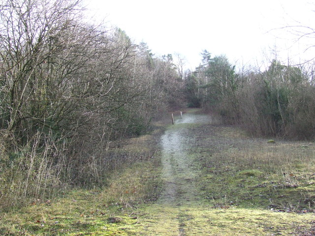 Path on White Hill near Shoreham
