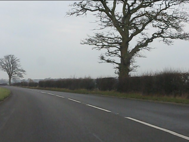 A41 north of the layby