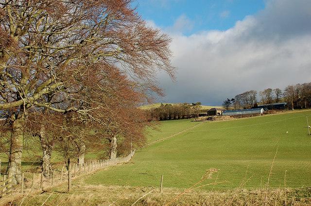 Burnetland Farm