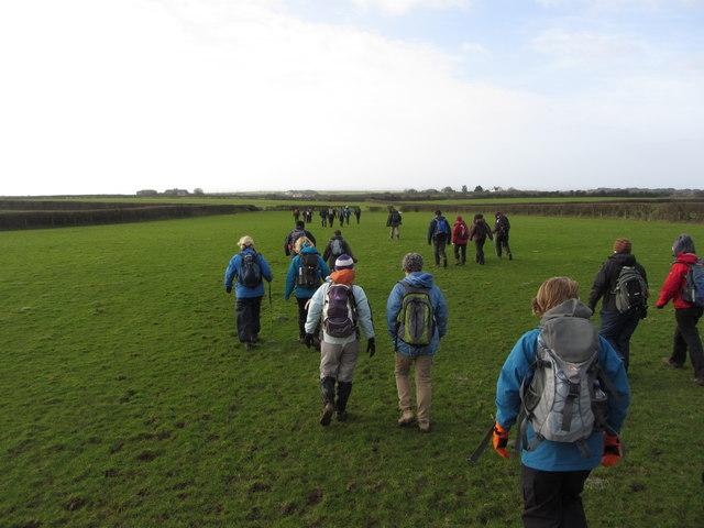 Fields near Wick