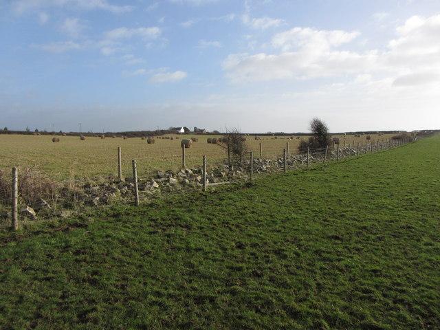 Field boundary near Tre-pit