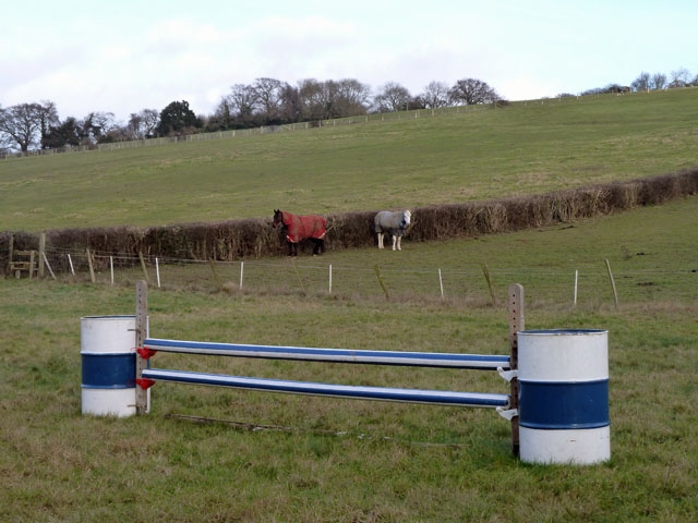 Hurdle and horses