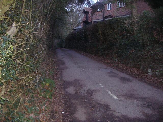 Donkey Lane, Abinger Common
