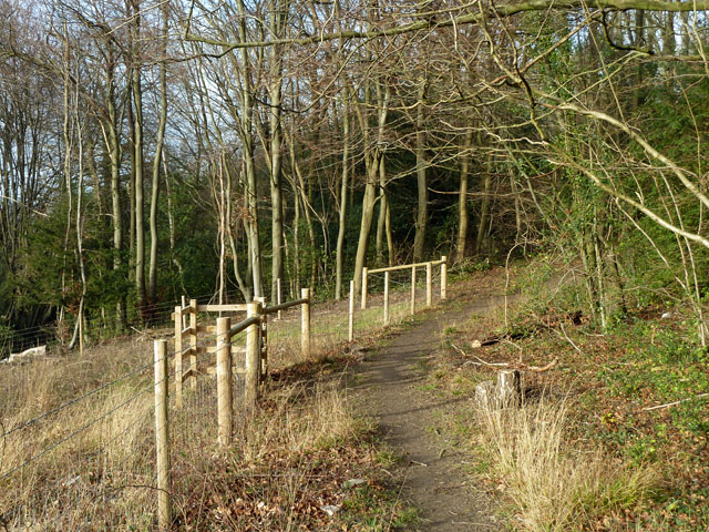Saltbox Hill nature reserve