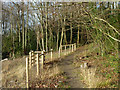 TQ4060 : Saltbox Hill nature reserve by Robin Webster