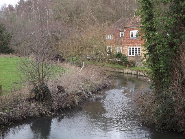 River Wey near Tilford
