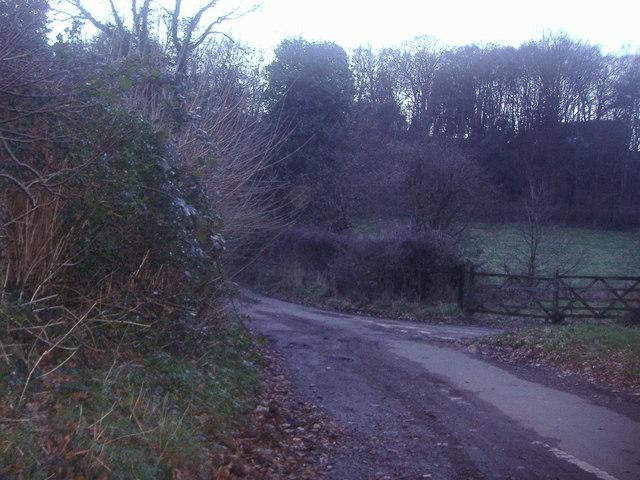 Sutton Lane, Sutton Abinger