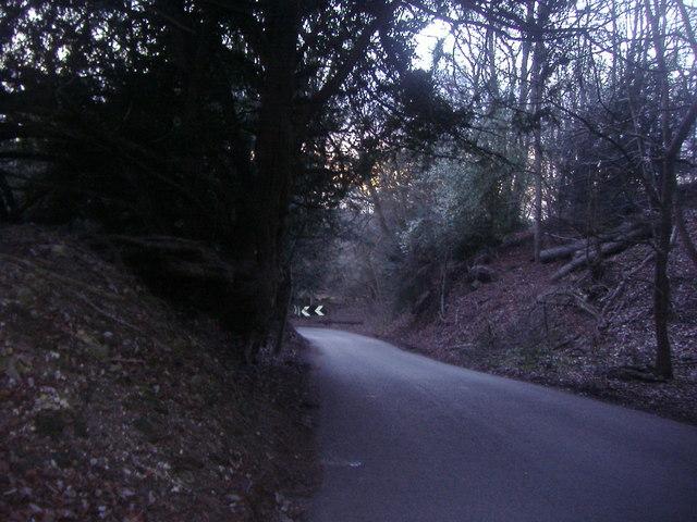 White Downs Lane, near Wotton