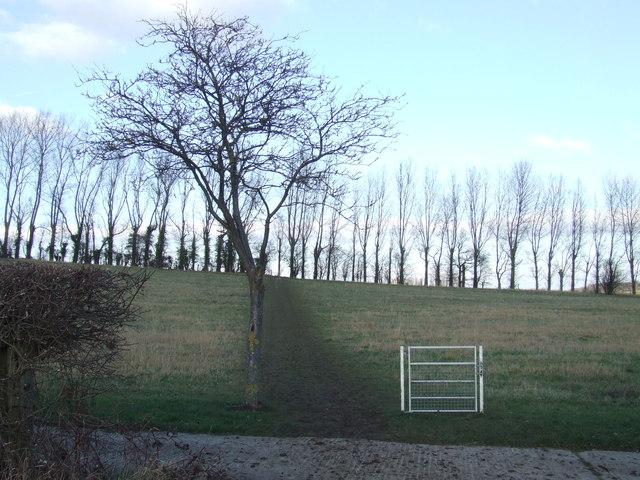 Gate near Lullingstone