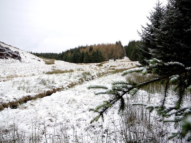 Junction of Davidson's and Usway Burn