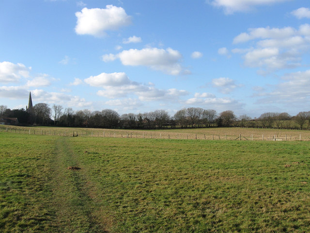 Church Field (1)