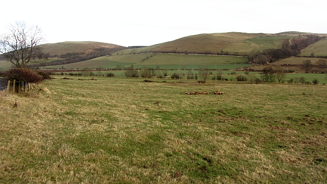 Pasture beneath Bowmont Hill