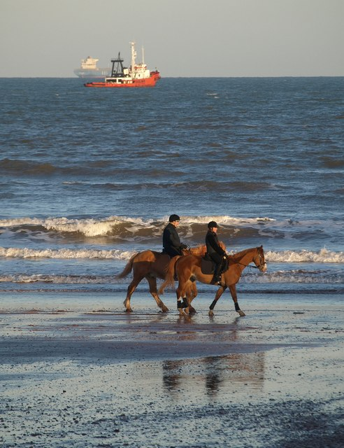 Horses on Goodrington Sands