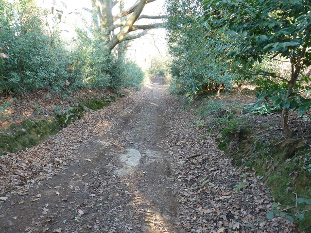 Footpath to Warr's Wood off Banks Road