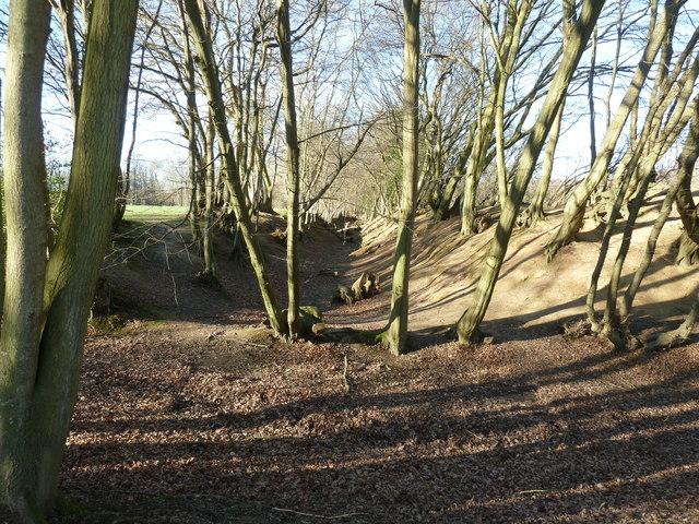 Dry moat south of Wapsborne Farm