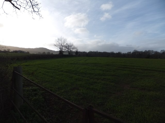 Fields south of Clapham and Haldon hills