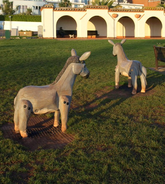 Donkeys at Youngs Park