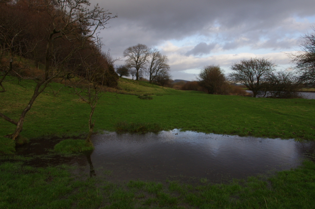 Grazing land by River Lune near Aughton