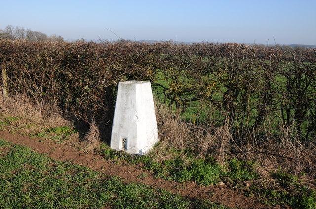 Trig point near Newland Common