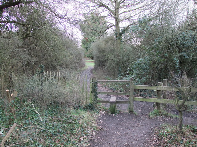 Stile on path in Langdon nature reserve