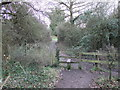 TQ6687 : Stile on path in Langdon nature reserve by PAUL FARMER