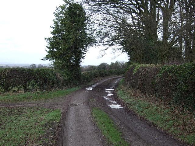 Mains Lane (track)