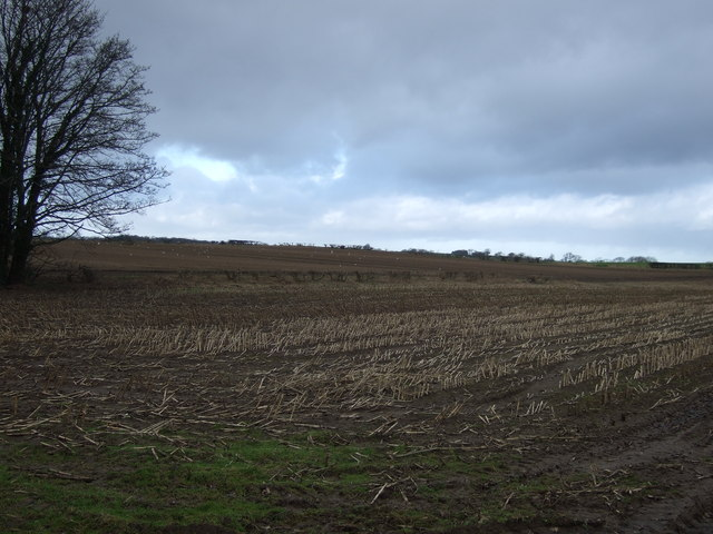 Farmland off Thwaites Lane