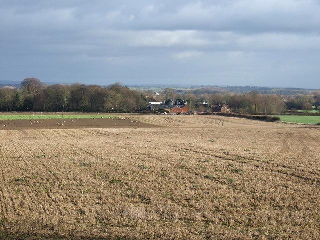Farmland towards Thorpe Farm