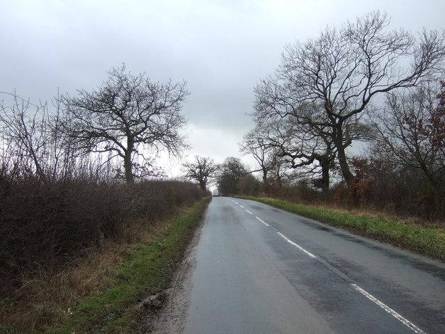 Minor road towards Bishop Thornton