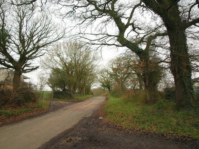 Lane at Underdown Moor