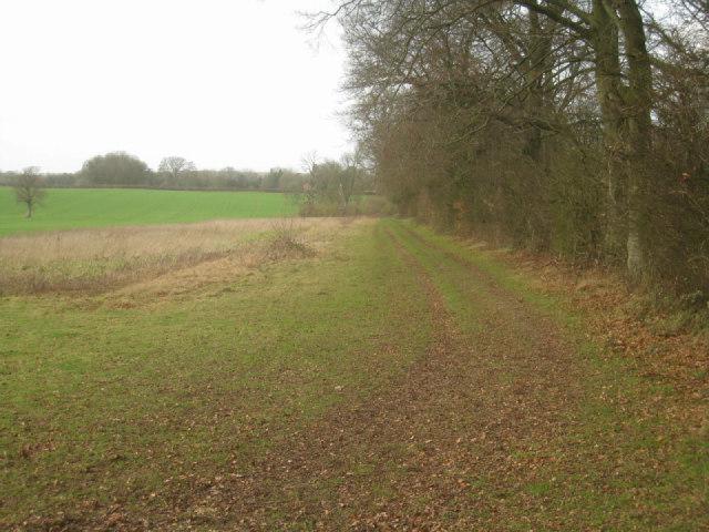 Farm track along field margin