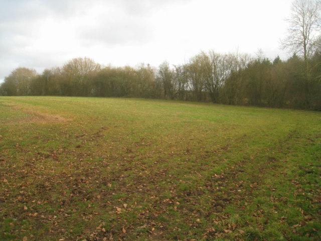 Field corner by railway