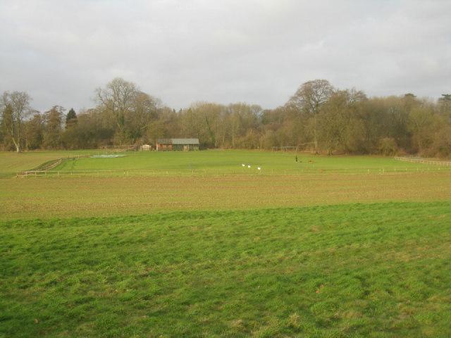 Oakley Cricket Club