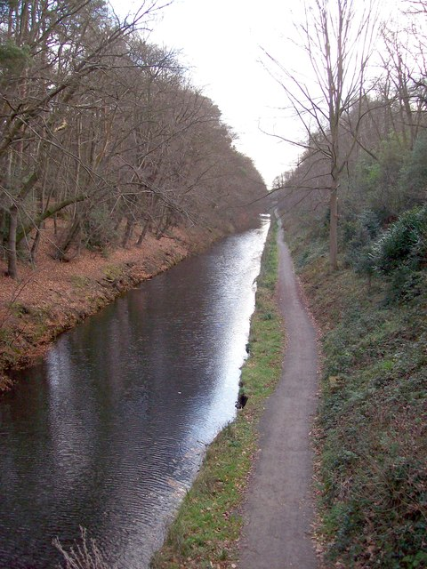 Basingstoke Canal from Deepcut Bridge