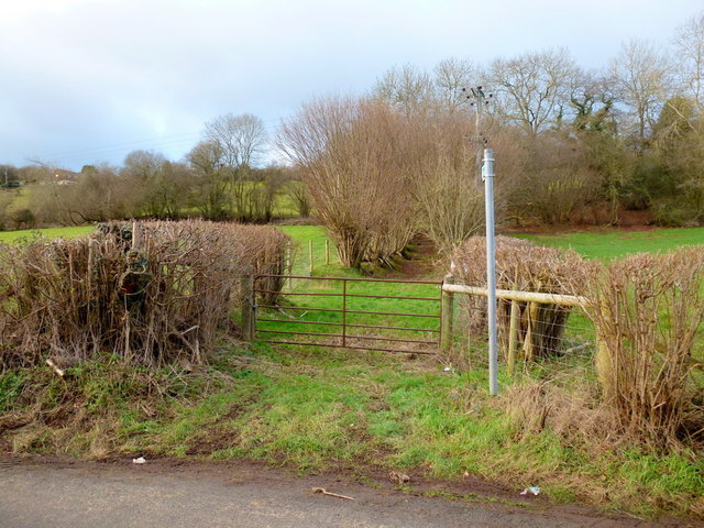 Footpath to Ewyas Harold Common
