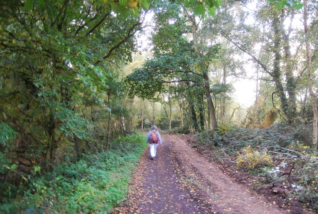 Walking the Blackwater Valley Path