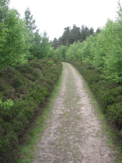 Footpath near Noddle End